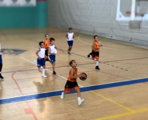 Club Bàsquet Bellpuig_18-19_11_19 Mini masculí